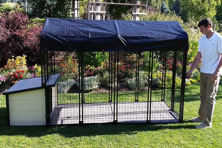 How Often Do You Need to Perform Maintenance on a Tarp Dog Kennel?