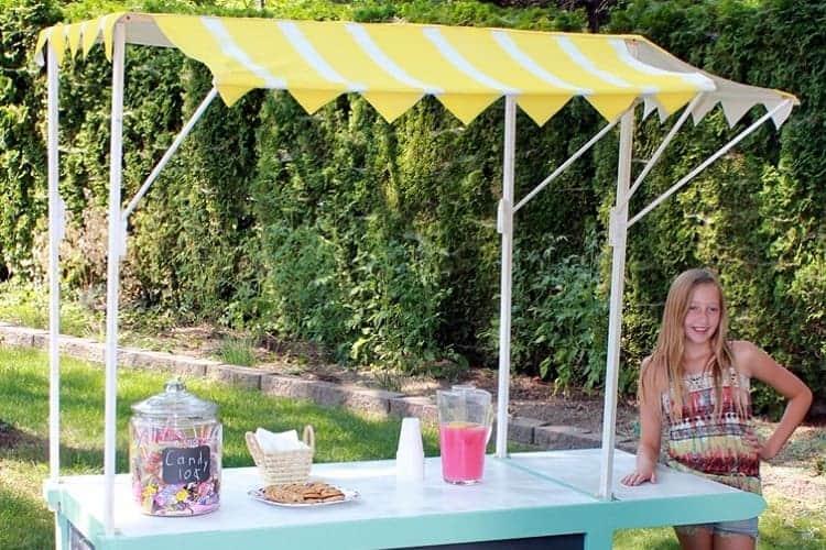 Lemonade Stand for Kids