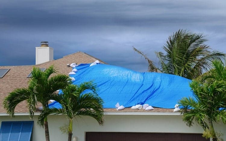 How Long do Hurricane Tarps Last?